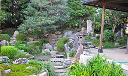 途中には『樋を形取った立派な樋石』も見受けられます。