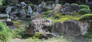 中央に位置する亀の形をした亀島の頭の部分には、実に亀の頭にそっくりな石が置かれています。